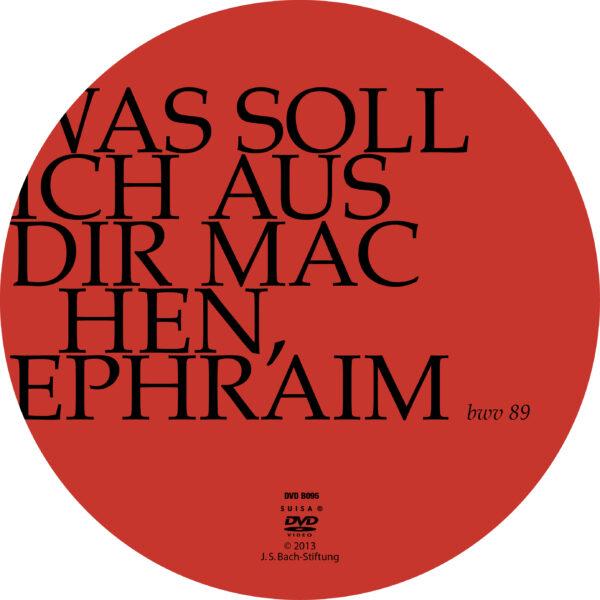 Was soll ich aus dir machen, Ephraim-413