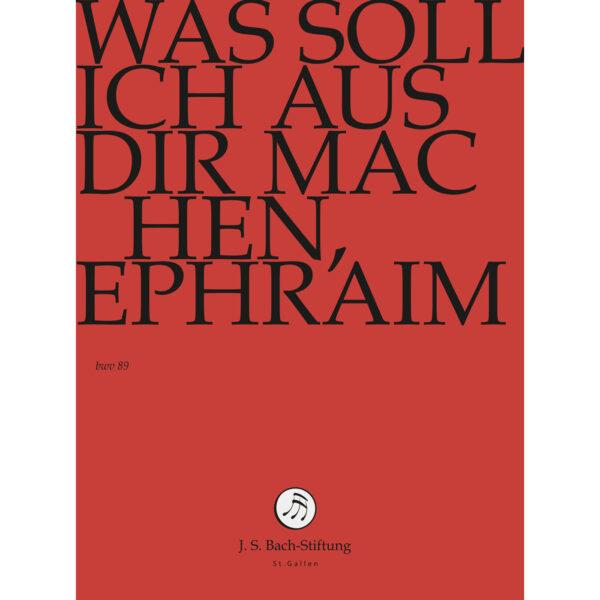 Was soll ich aus dir machen, Ephraim-411