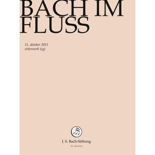 Bach im Fluss-464